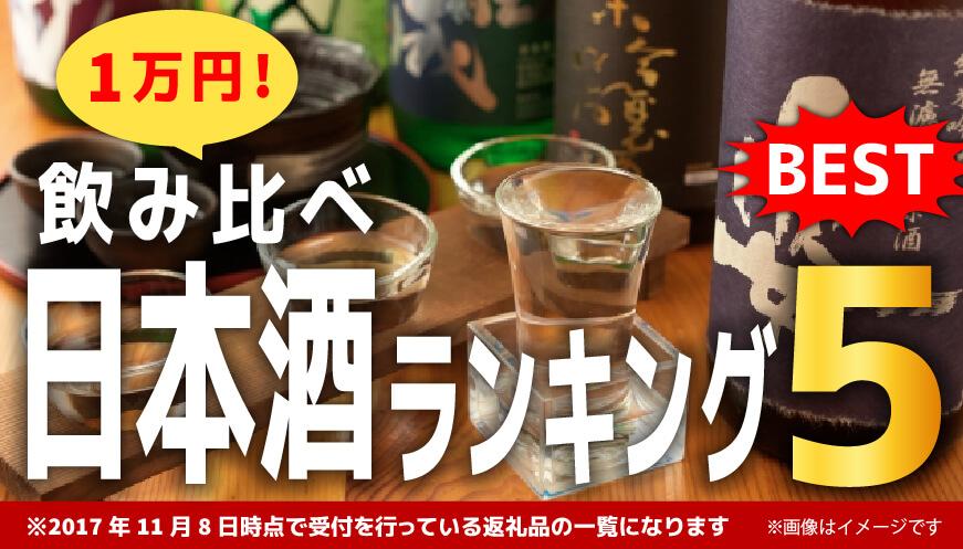 【日本酒 飲み比べセット】1万円 ランキング5!