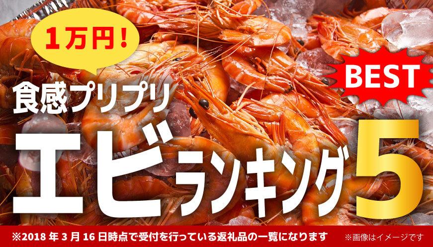【人気のエビ】1万円ランキング5!