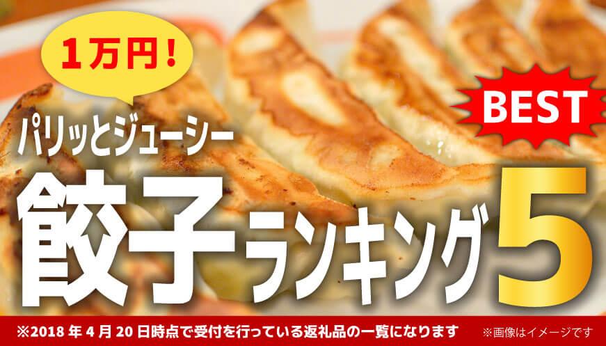 【人気の餃子】1万円ランキング5!