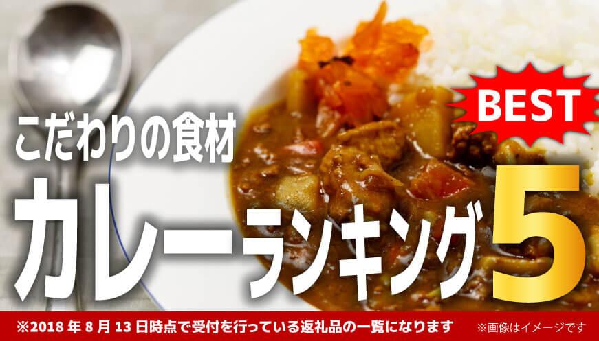 【人気のカレー】ランキング5!