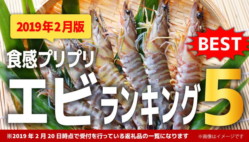 【2019年2月版】【人気のエビ】1万円ランキング5!
